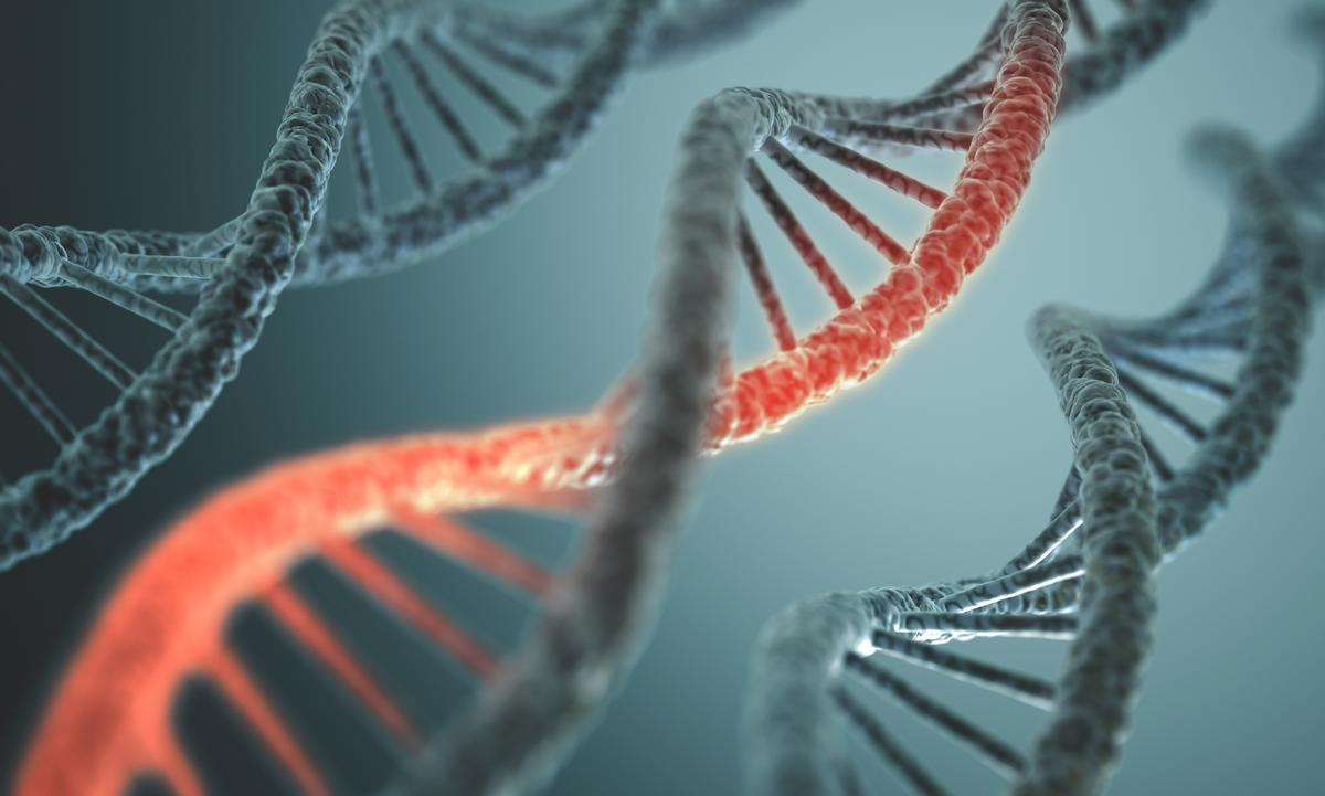 An international consortium has published the results of a comprehensive study into the genome of cancer