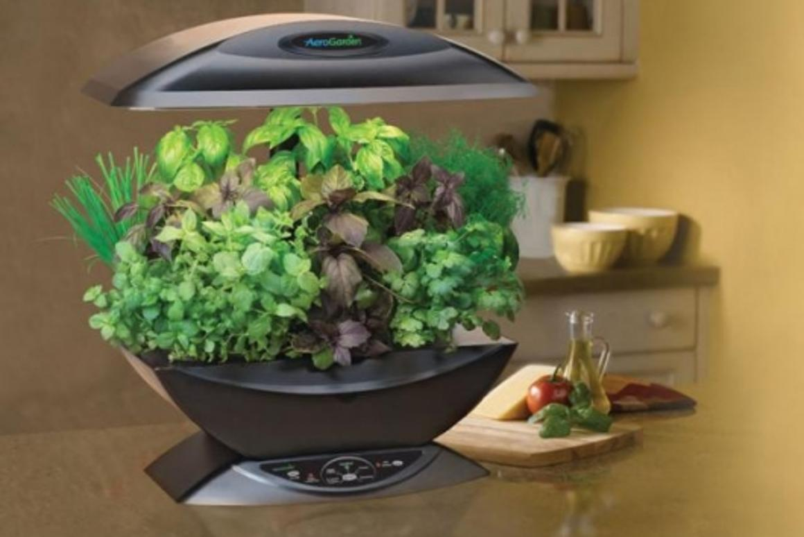 World's First Kitchen Garden Appliance – the self-watering