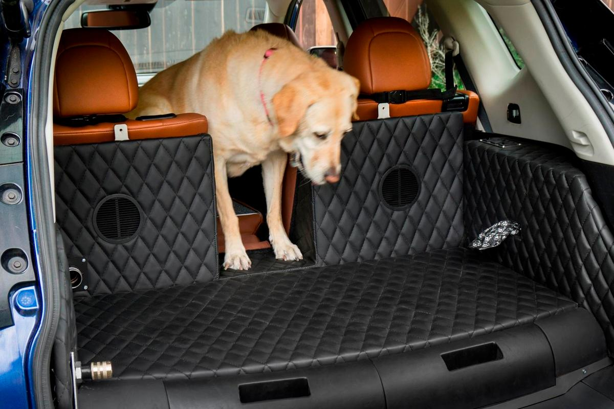 This special pet pass-through in the rear seats of the Rogue Dogue is particularly clever