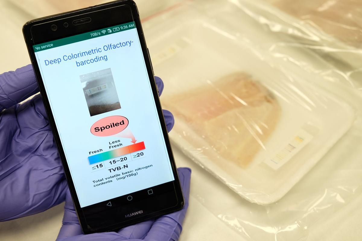 Researchers have developed an electronic nose that can reveal spoiled meats, by analyzing unique color patterns in barcodes applied to packaging