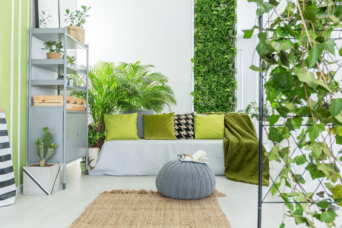 Plants may be nice to have around, but new research suggests opening a window could more effectively clear the air in an indoor space