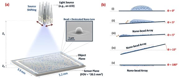 Schematic illustrating the method for viral load detection using holographic microscopy