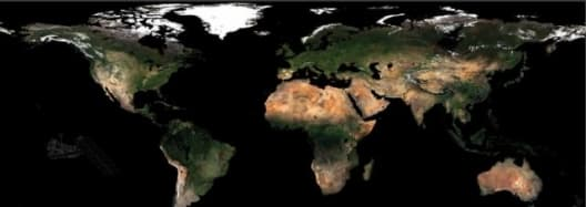The ESA's GlobCover project produced this composite map of Earth.