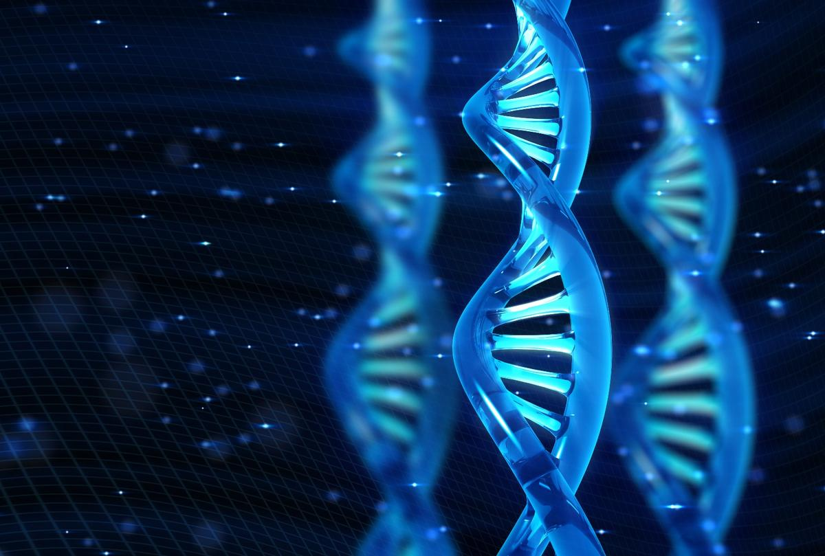 Scientists claim tohave created the first stable, replicating semisynthetic organism to contain an extra pair of artificial bases in its genetic code