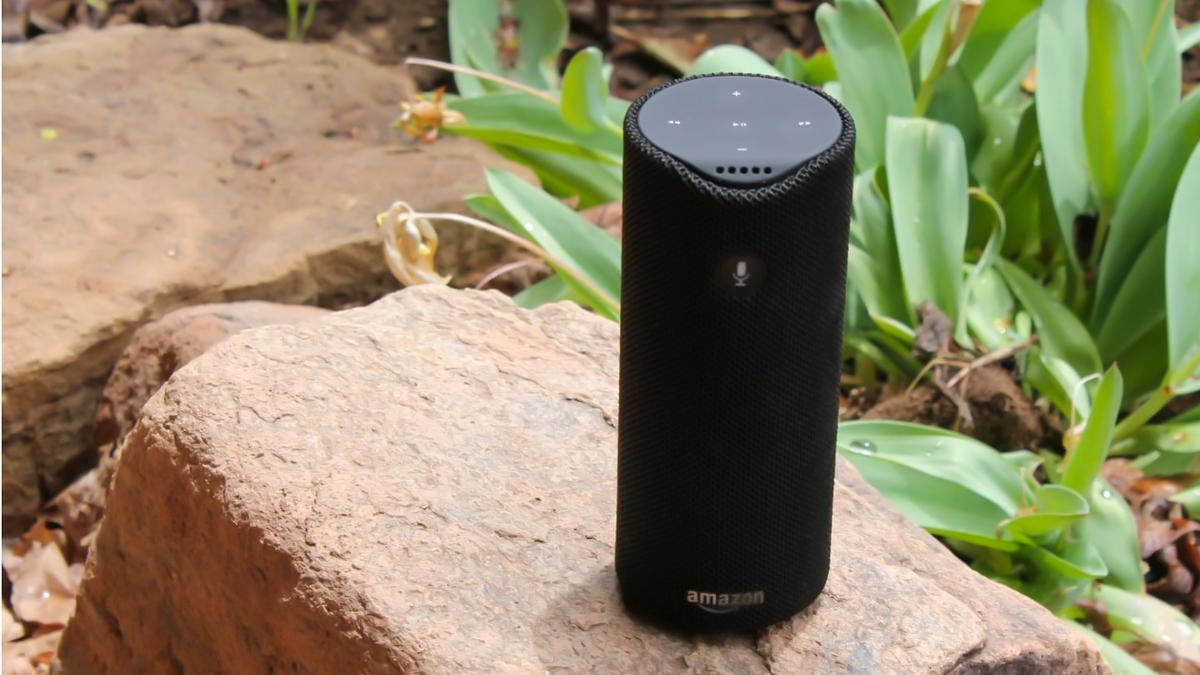 Tap can go anywhere as a Bluetooth speaker but needs to be online for Alexa to work