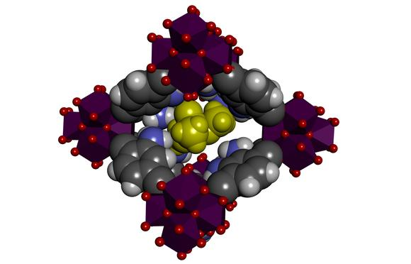 The team created an MOF consisting of organic molecules (in grey and black) and metal ions (zirconium, in purple) – between these molecules are little holes that can absorb the phosphanates (in yellow)