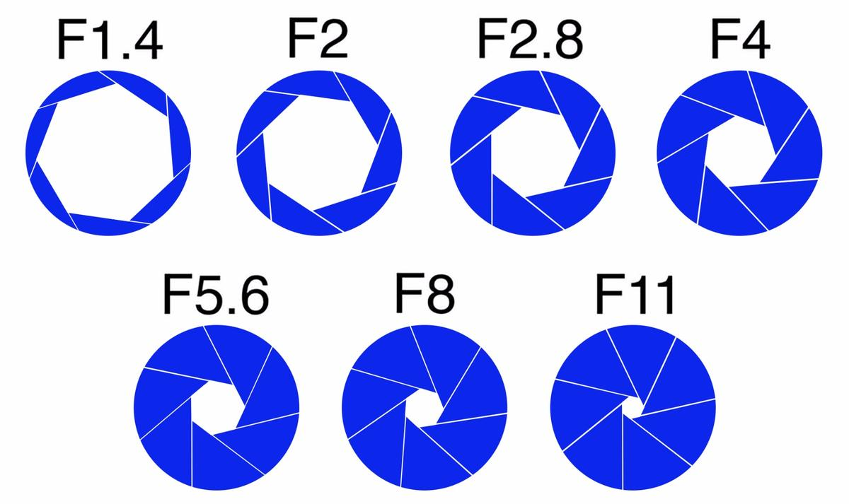 This diagram shows how the size of aperture narrows as you select a bigger f-number