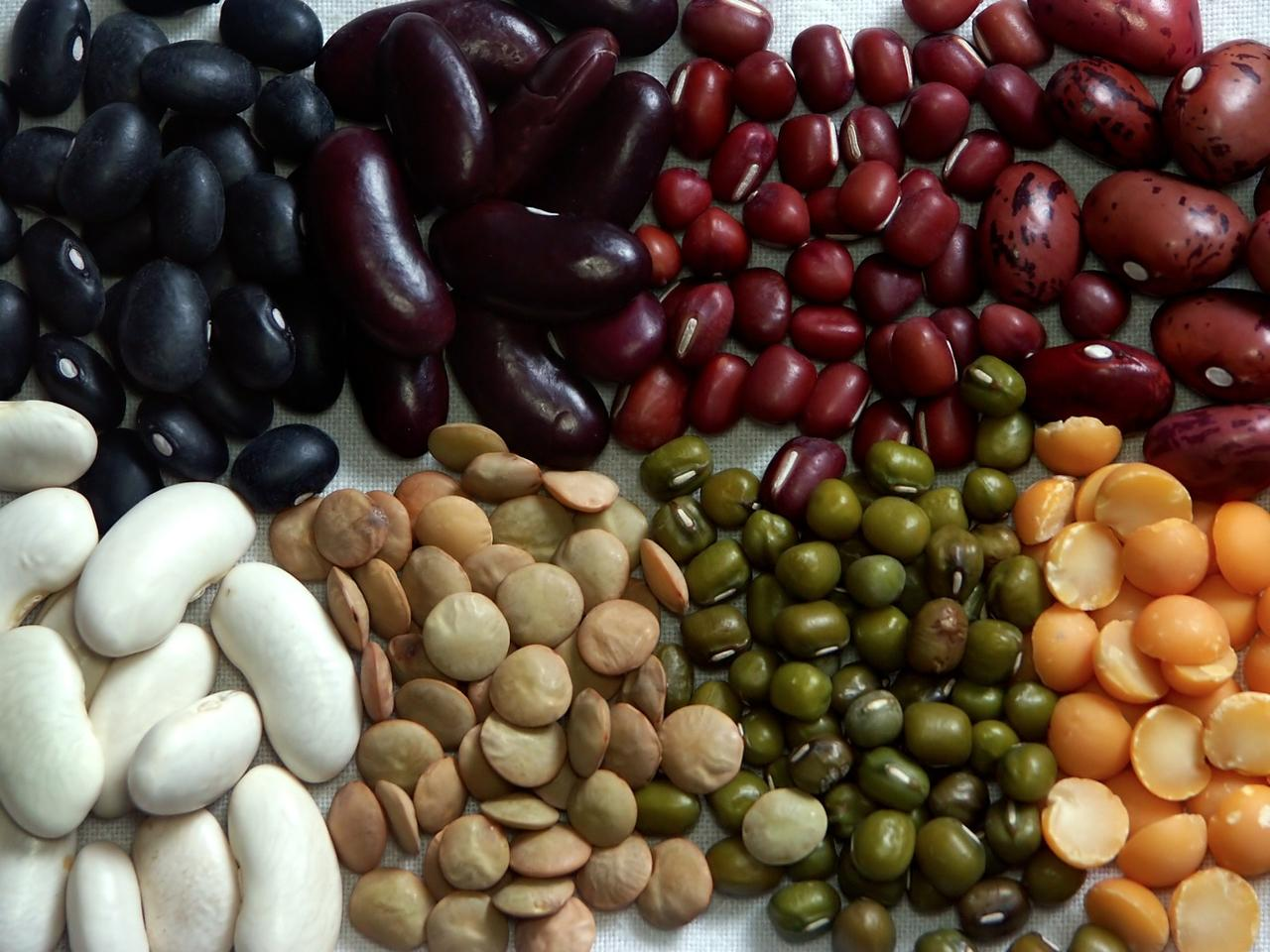 The researchers calculate that if the entire US were to swap out beef for beans, it would cut C02 emissions by 334 million metric tons
