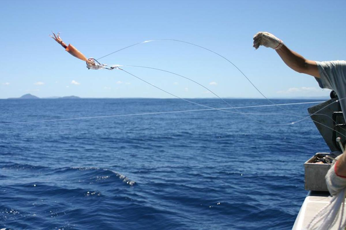 A Hookpod-equipped baited hook is deployed