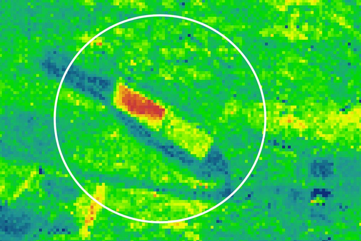 FLEX aims to detect abnormal peaks of florescence from space, providing warnings of stress in plants (Image: University of Milano-Bicocca)