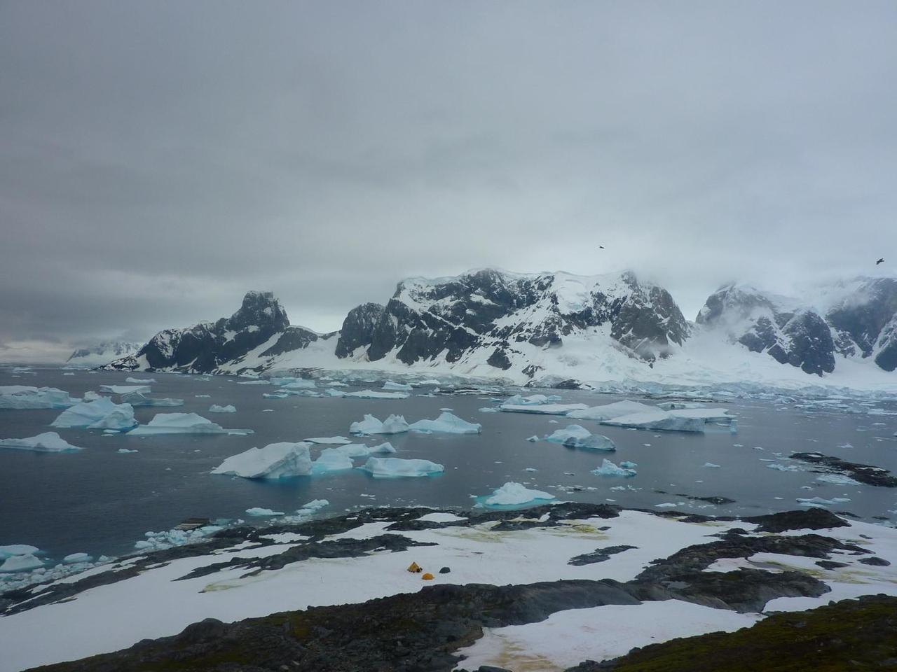 The view from the top of the hill on Green Island, Antarctica, with the researchers' field camp visible below