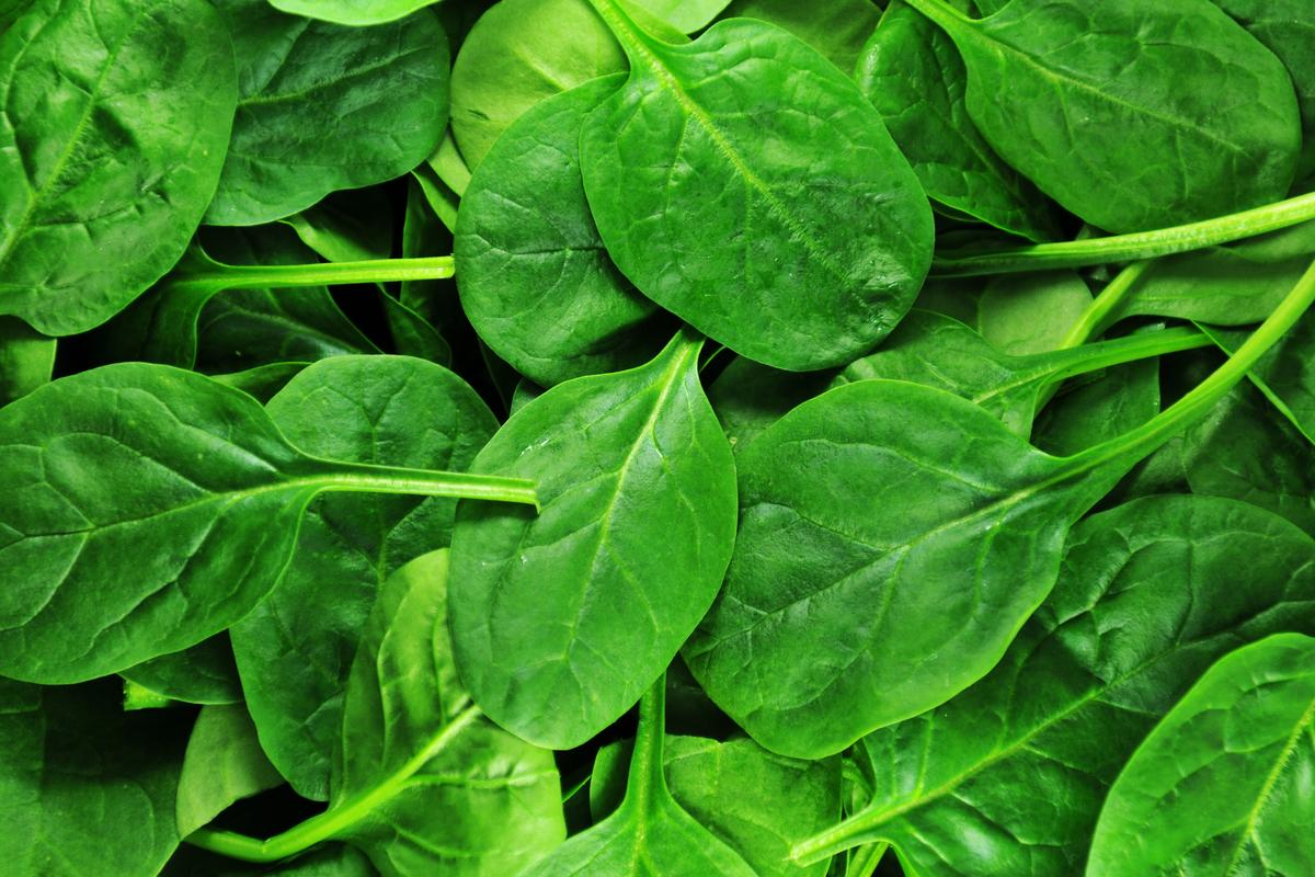 Scientists have used decellularized spinach leaves as a supporting structure for lab-grown meat