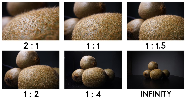 Laowa 24mm f/14 Probe Macro Lens: magnification range