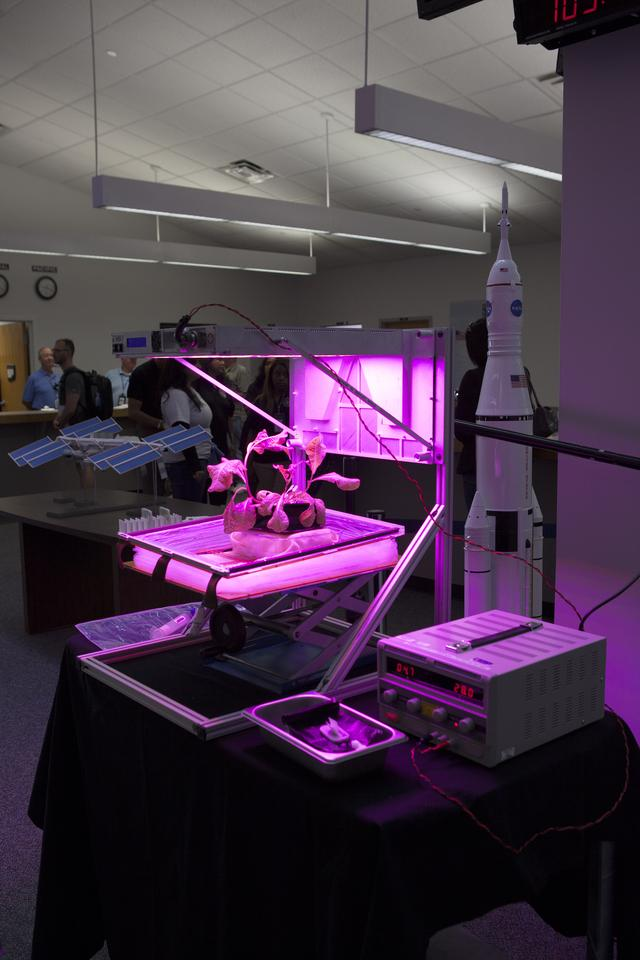 The Veggie unit on display at the Kennedy Space Center in Florida (Photo: NASA)