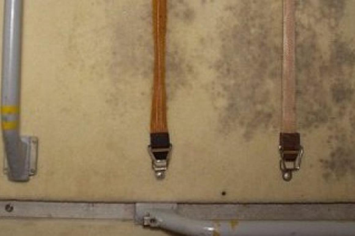 Mold grows on the International Space Station on a panel where exercise clothes were hung to dry