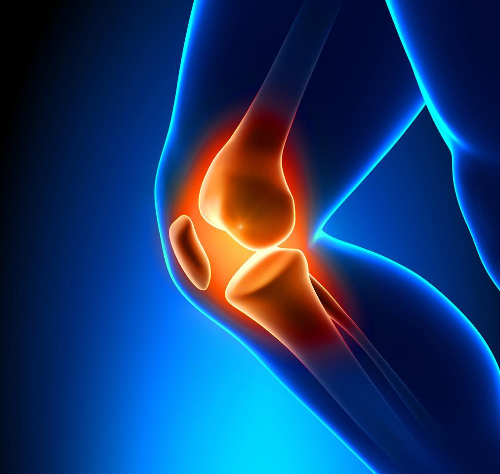 A new type of scaffold could give boost the recovery of torn ligaments and tendons