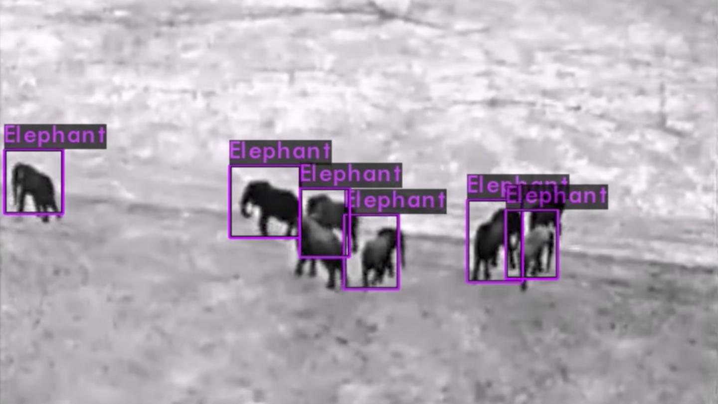 AI software developed by Neurala will be used to analyze drone footage in real time to identify animals, vehicles and poachers