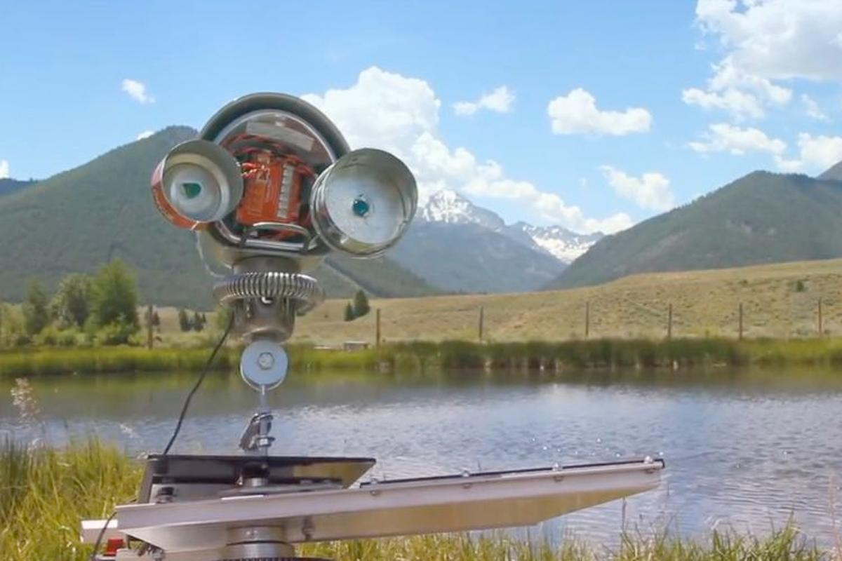 Skippy is an internet-controlled robot that skips stones across a pond