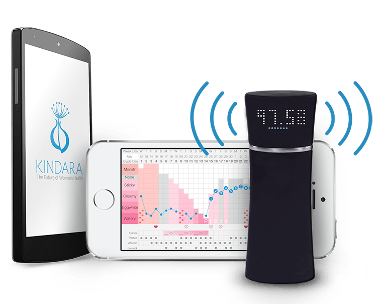 Wink measures the user's basal body temperature at regular intervals