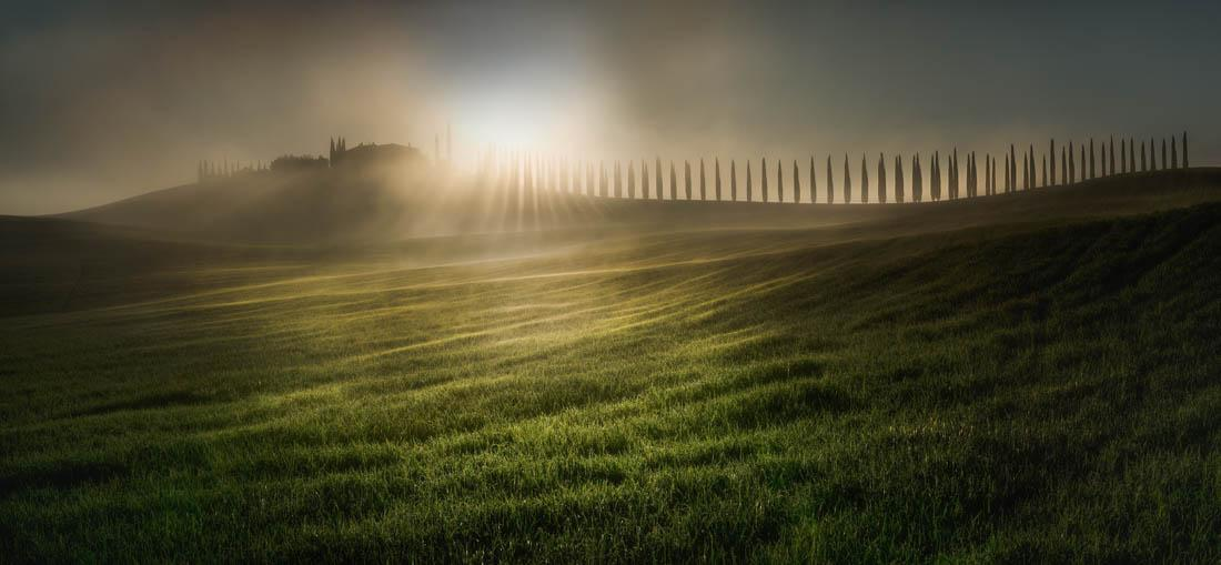 Open Photographer of the Year. Winner, Nature / Landscape. Combing The Sunlight, Tuscany, Italy