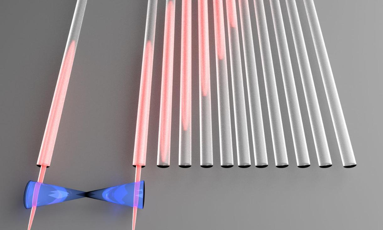 Quantum information encoded in single particles of light is moved to a distant location via perfect state transfer