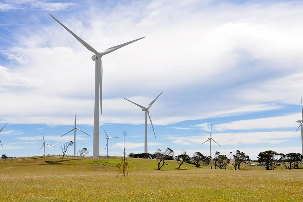 Bloomberg analysts say electricity generation from new wind farms is cheaper than new coal in Australia (Photo: Shutterstock)