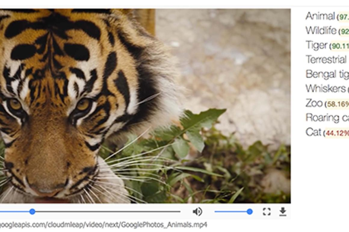 Google's latest AI advancement expands its existing image recognition AI into the realm of video