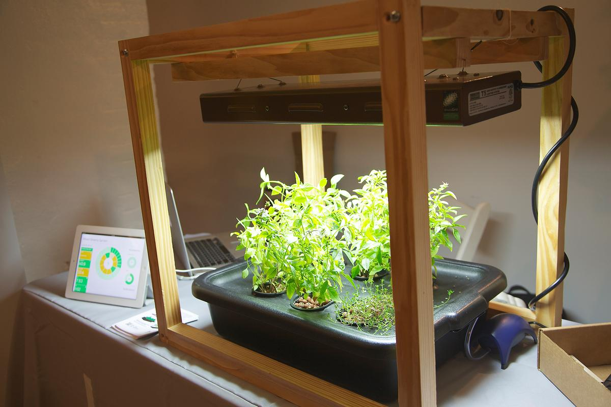 Bitponics at CE Week 2013 keeps green thumbs connected with their gardens