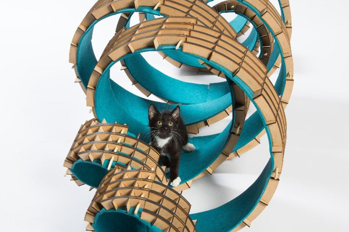 """""""UnFURled is cat architecture designed to balance adaptability and graphic form,"""" says Perkins + Will"""