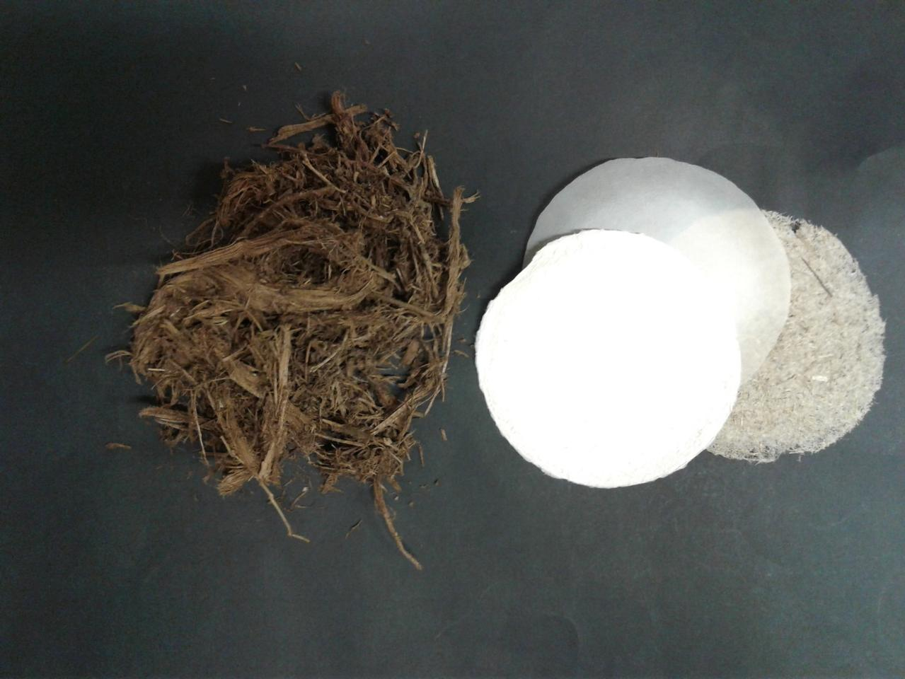 Elephant dung (left), along with paper made from it