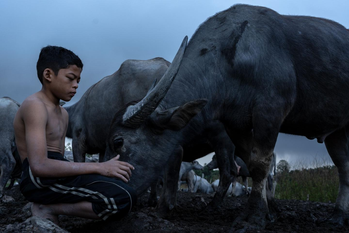 "Student shortlist: From the series ""Soul of the Wild. ""I chose Syukor as the model to show that he belongs with animals: I decided to focus on the harmony between humans and animals."