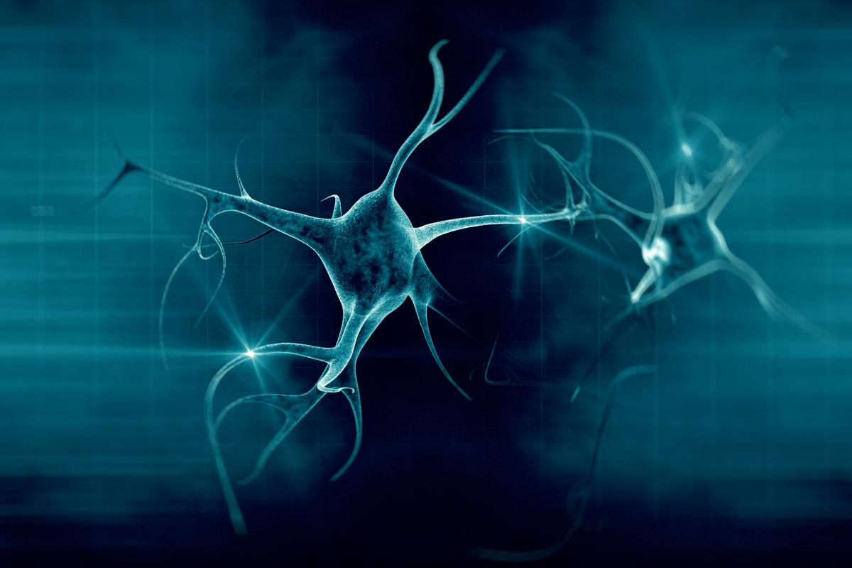 Yale researchers have captured on video how the brain clears out a dead neuron