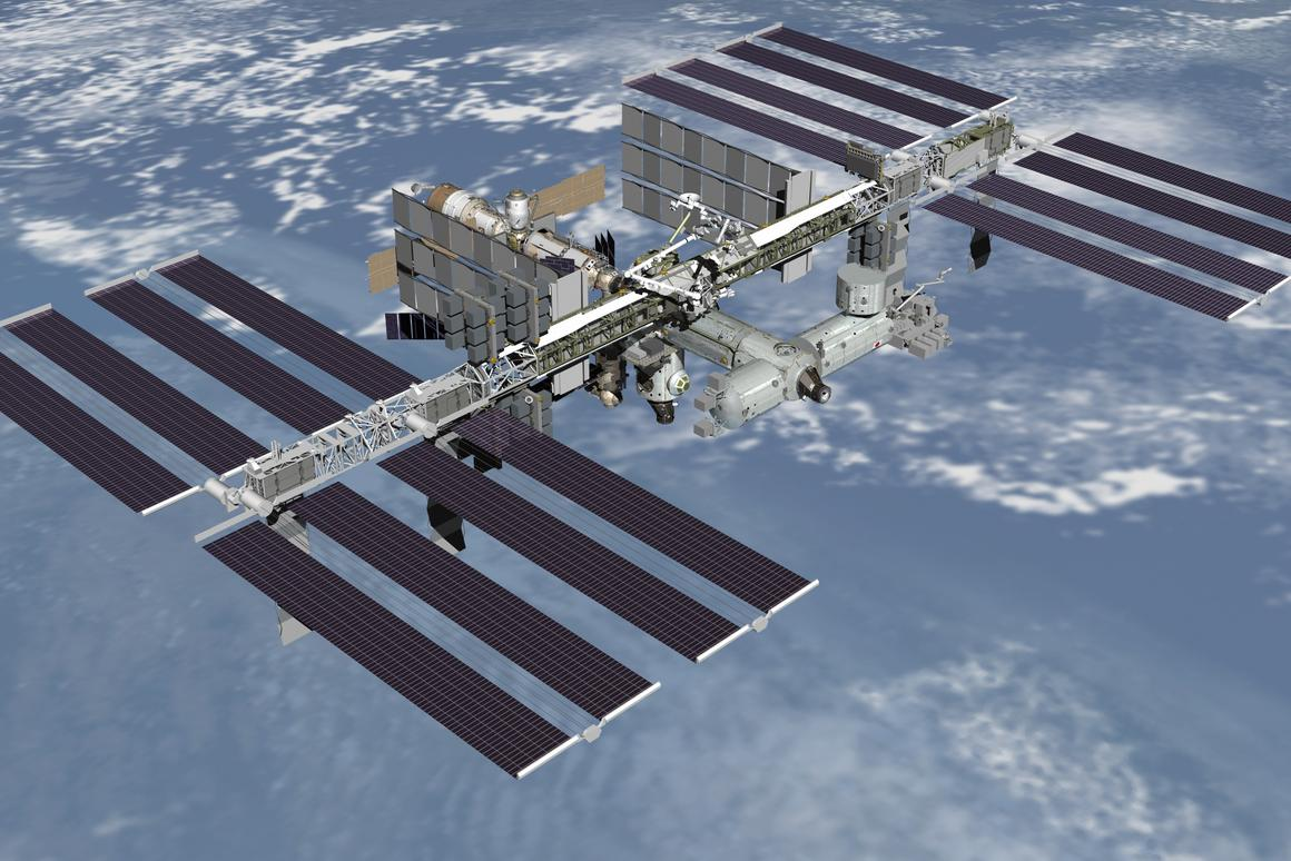 A US$30,000 grant will see human stem cells sent to the International Space Station (ISS) to observe whether they do in fact grow at a greater rate than normal (Image: NASA)