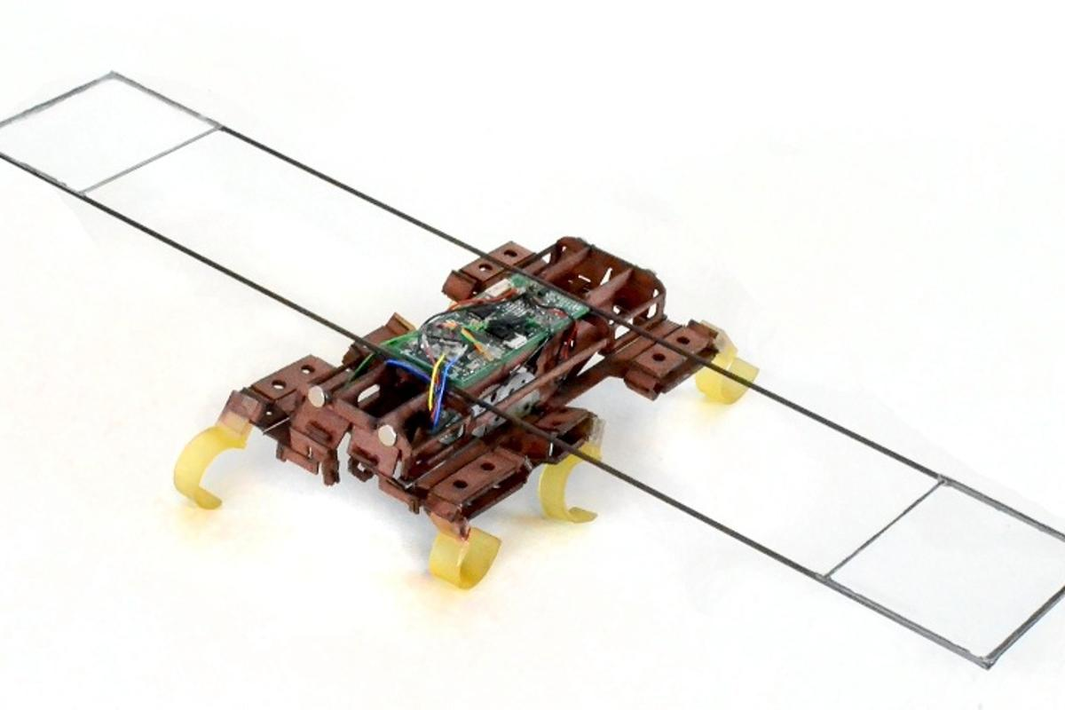 VelociRoACH can achieve a running speed up to 2.7 meters per second or 26 body lengths in one second (Photo: UC Berkeley Biomimetic Millisystems Lab)