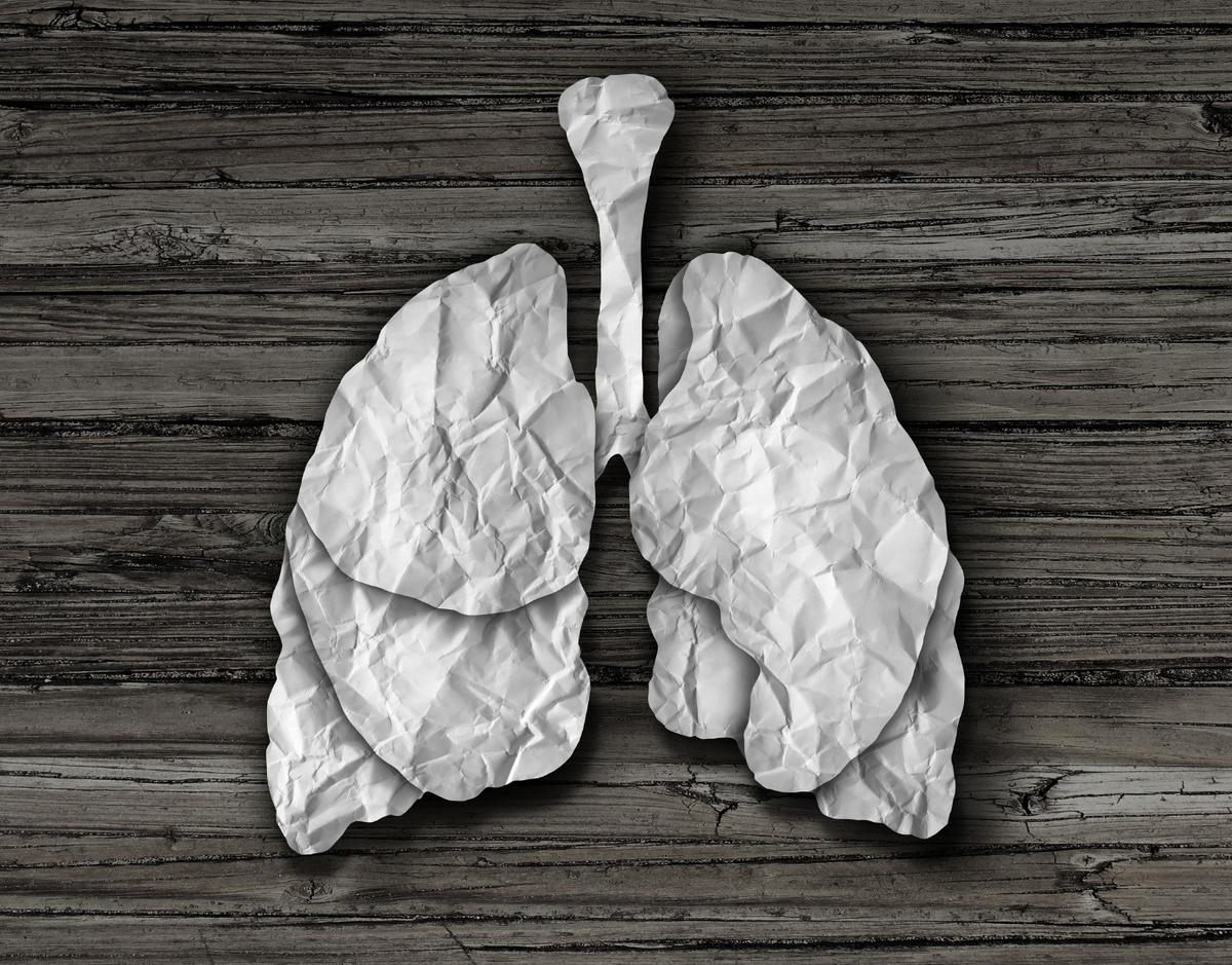 Researchers have developed away to rehabilitate damaged lungs so they're suitable for transplant