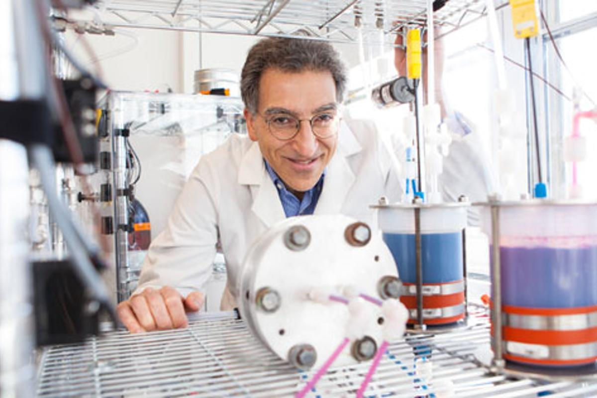 An inexpensive high capacity organic battery has been developed by Professor Michael Aziz at the Harvard School of Engineering and Applied Sciences