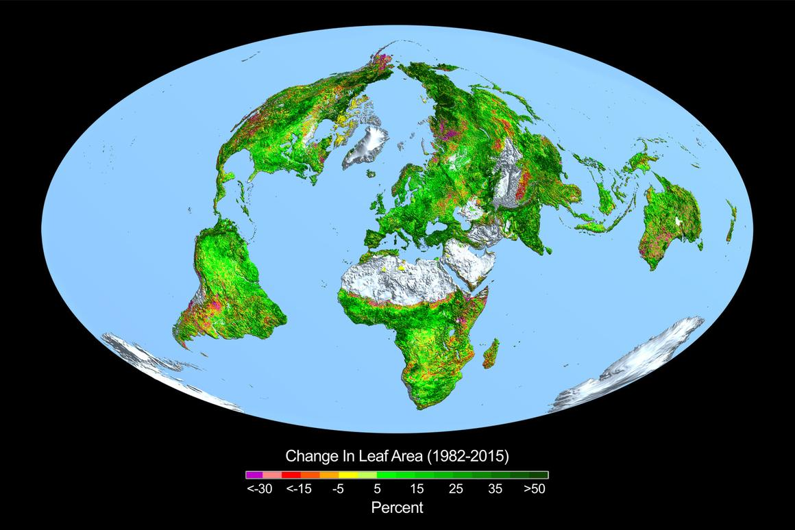 Rising levels of atmospheric carbon dioxide in the atmosphere has meant that large parts of the Earth have shown significant greening over the last 35 years
