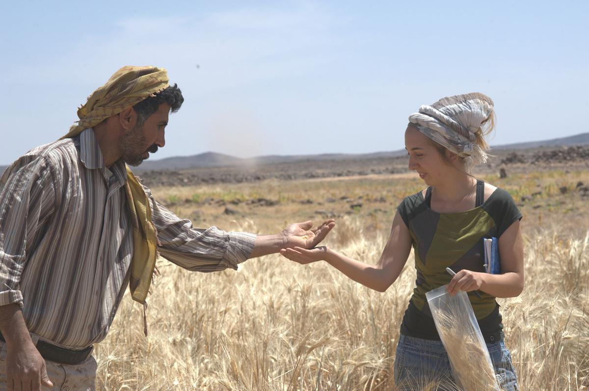 Dr. Amaia Arranz-Otaegui and Ali Shakaiteer examine wild cereals near the Shubayqa 1 site