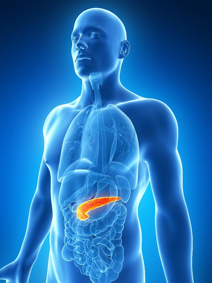 Reducing pancreatic fat can be highly effective in the treatment of diabetes