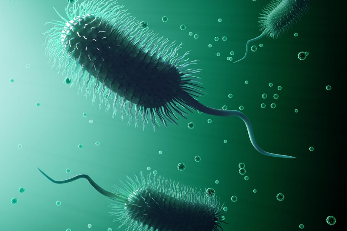 """A new study has found that """"anti-evolvability"""" drugs could be a long-term solution against superbugs"""