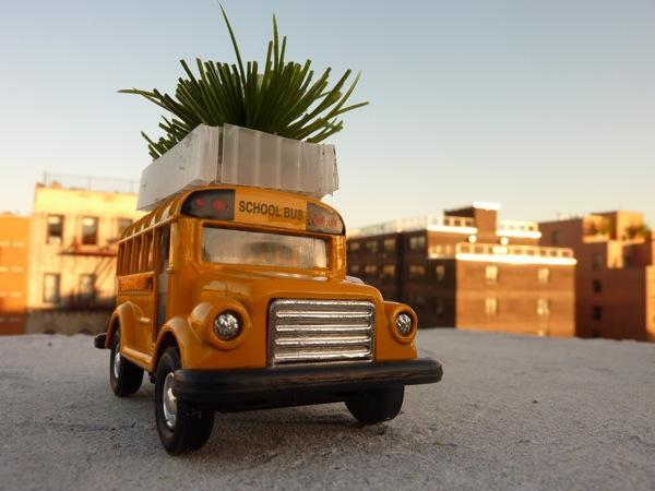 A bus roof garden model (Image: Marco Castro Cosio)