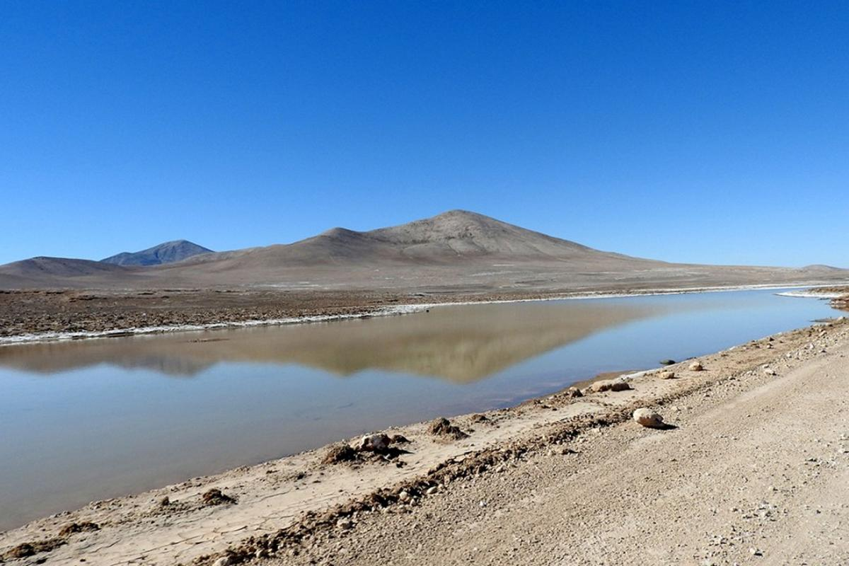 A small, ephemeral lagoon in the hyperarid core of the Atacama Desert