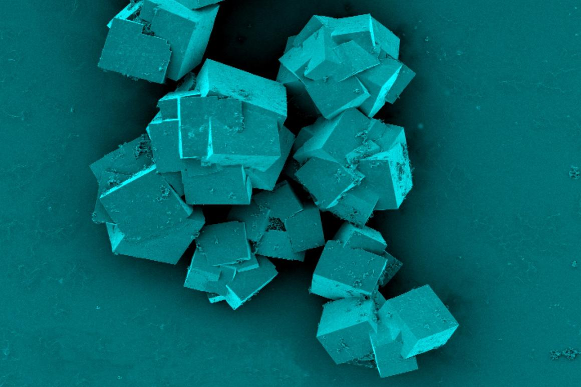 A scanning electron microscope image of metal-organic frameworks, crystals that can separate lithium from seawater
