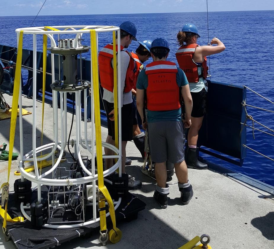 A team has discoveredmicrobes in the Pacific Ocean that can breathe arsenic