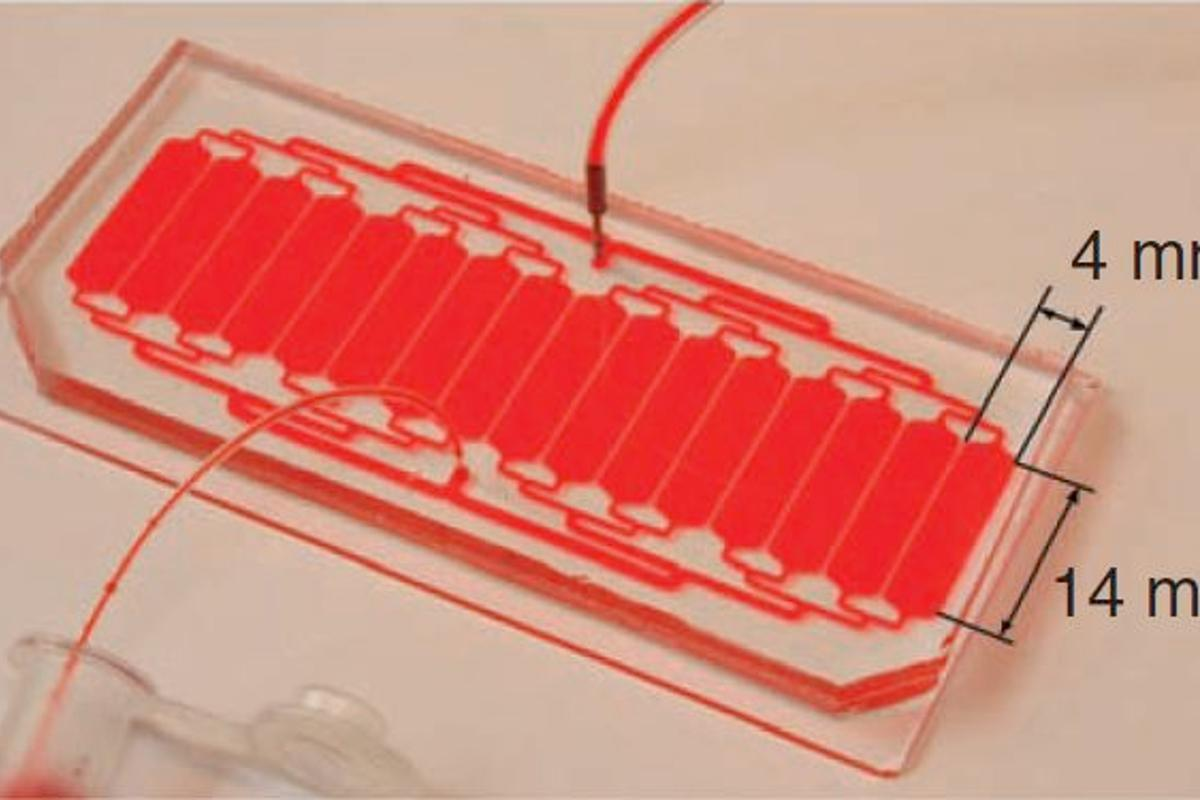 The MGH microfluidic neutrophil-capturing device