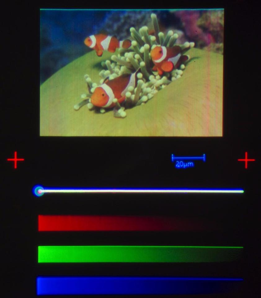 Layers of red, green and blue quantum dots make up the minuscule picture
