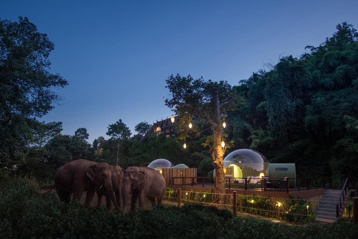 The Jungle Bubbles are part of a larger 160 acre (65 hectare) resort overlooking the Mekong and Ruak rivers in northern Thailand