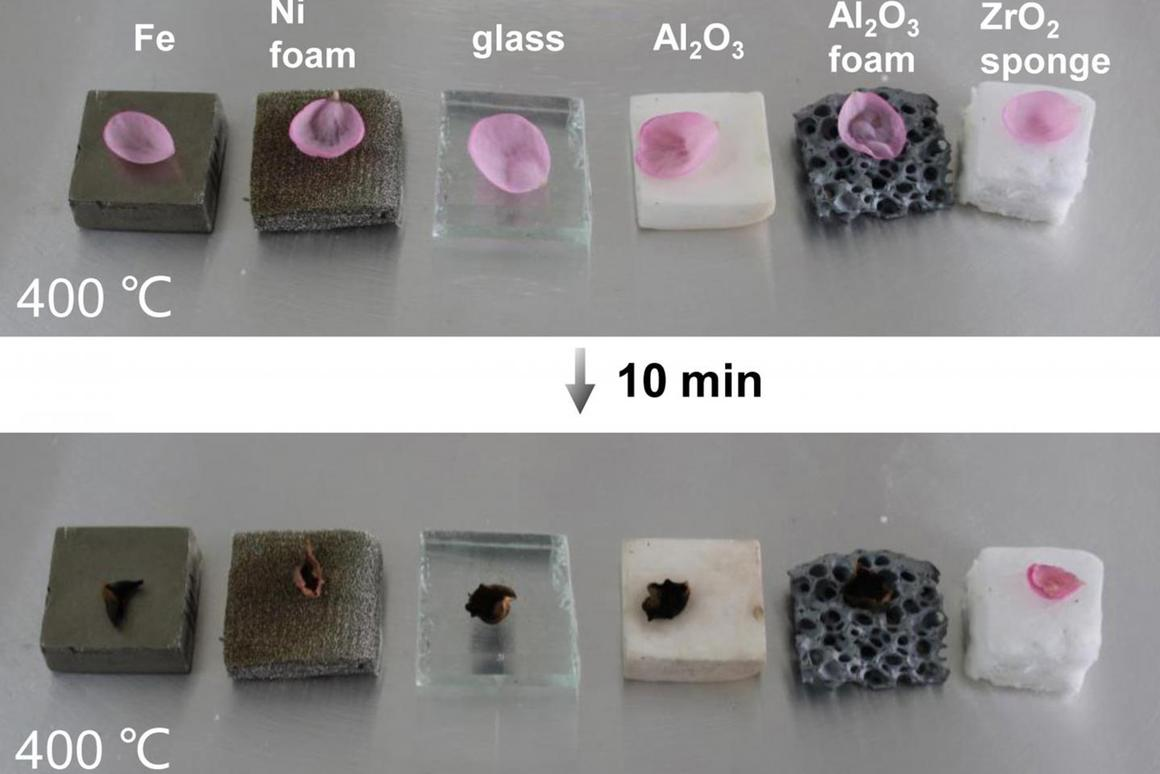 A sample of the ceramic sponge (far right) protects a flower petal from heat, where other porous ceramic materials fail