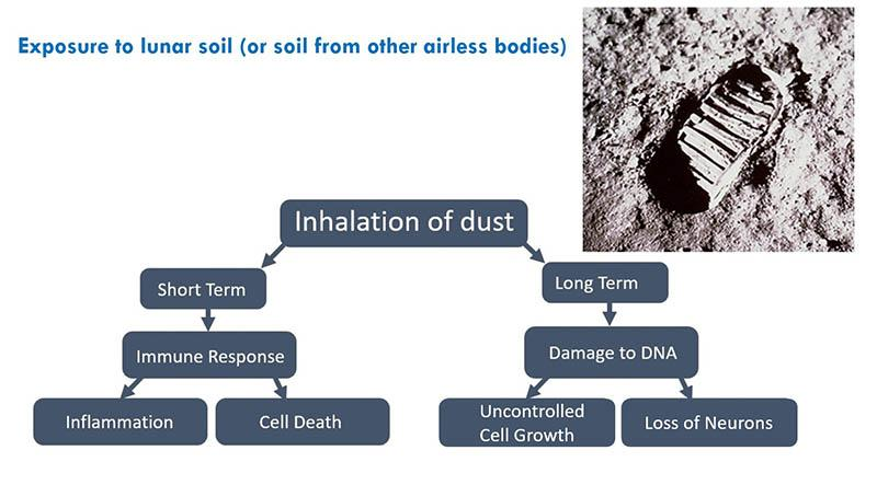 Flow chart shows the possible health effects of breathing lunar dust, in both the short- and long-term