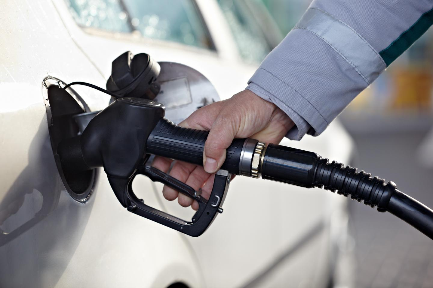 Scientists have succeeded in converting plant waste to gasoline (Photo: Shutterstock)